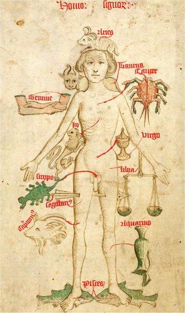 Zodiacal Man 1486